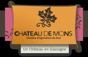 logo chateau de mons